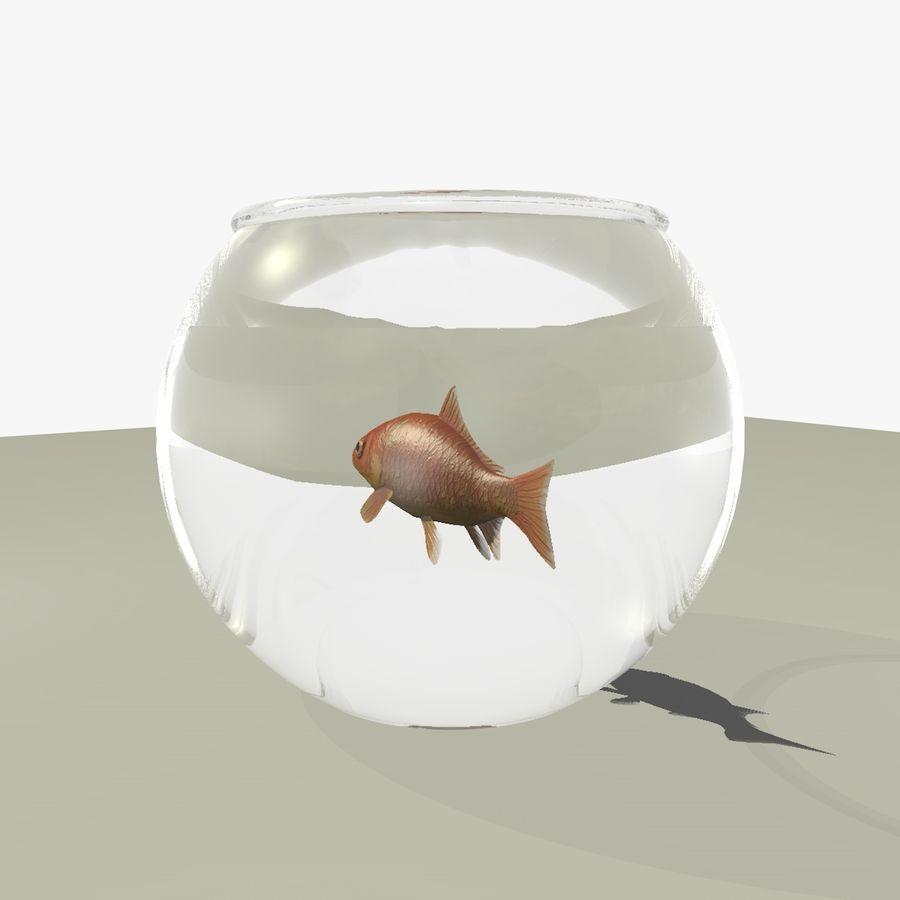Peixe dourado animado em um aquário royalty-free 3d model - Preview no. 8