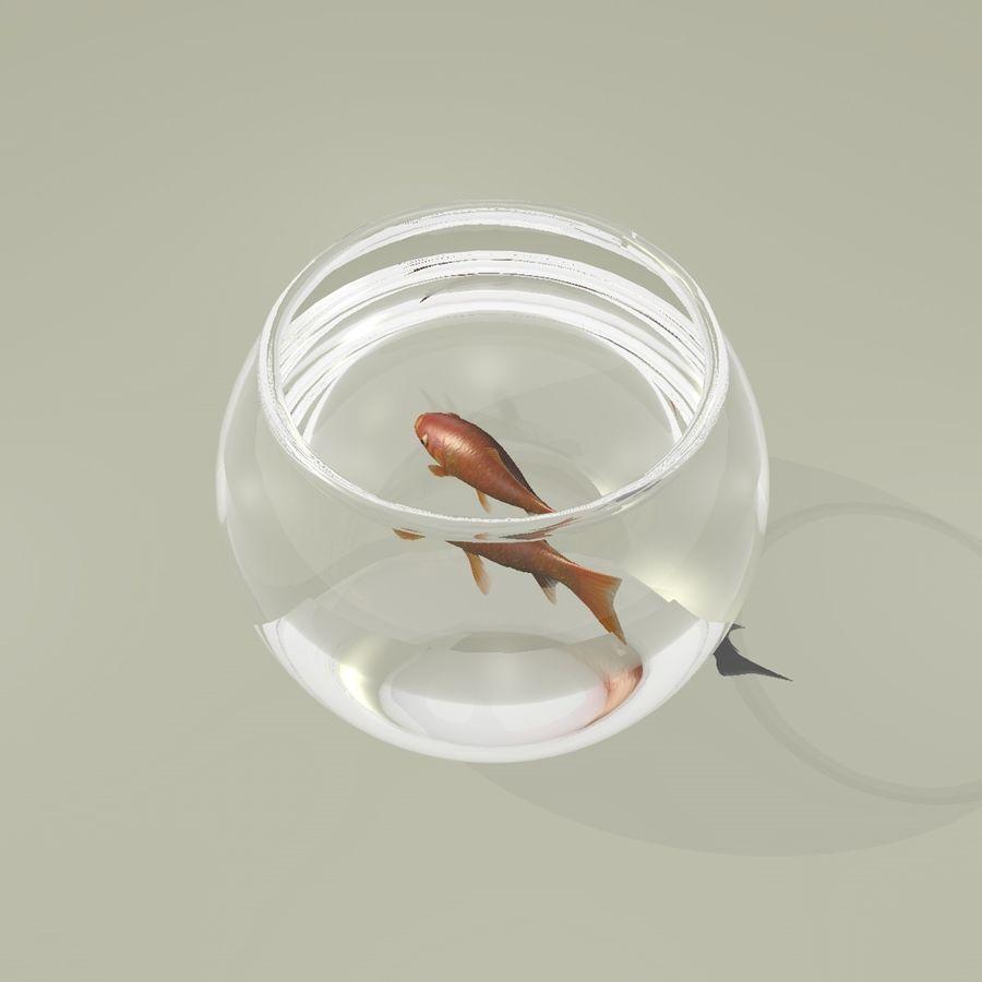 Peixe dourado animado em um aquário royalty-free 3d model - Preview no. 7