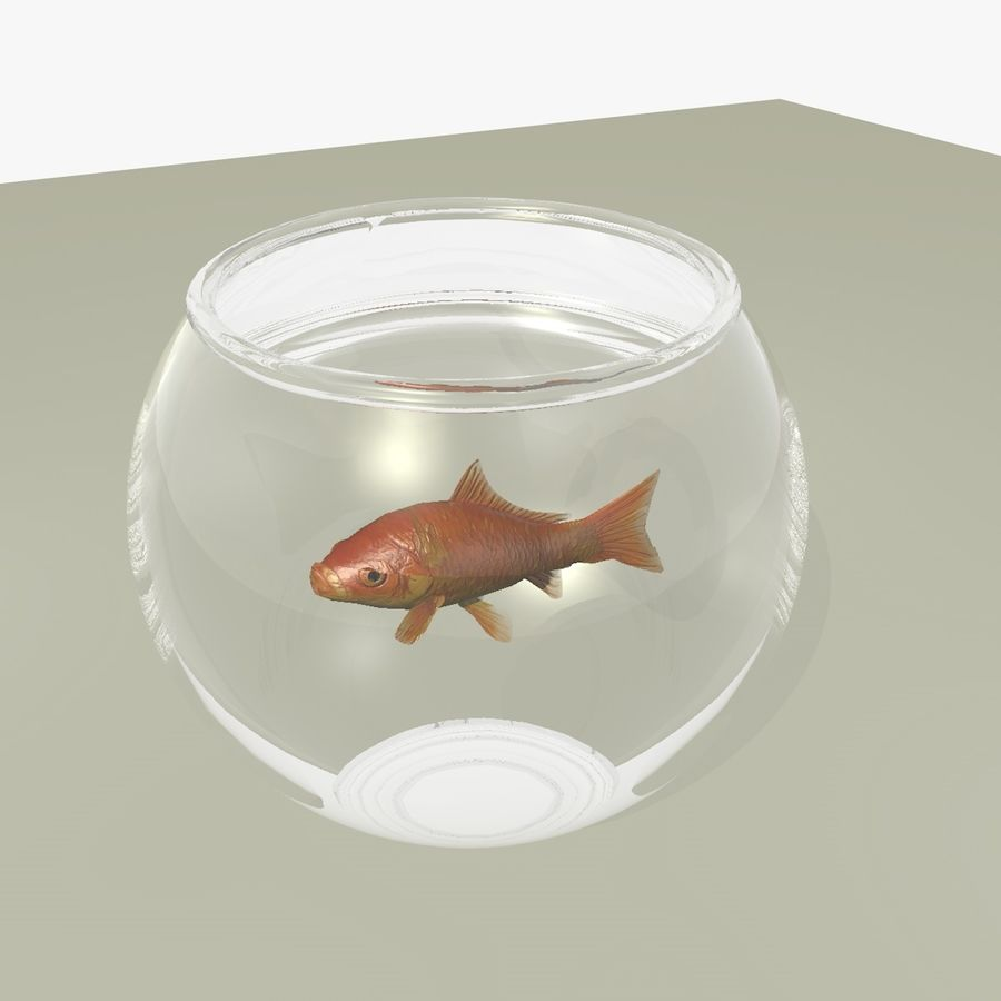 Peixe dourado animado em um aquário royalty-free 3d model - Preview no. 6