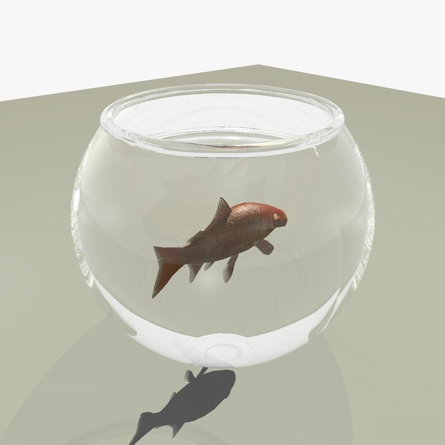 Peixe dourado animado em um aquário royalty-free 3d model - Preview no. 10