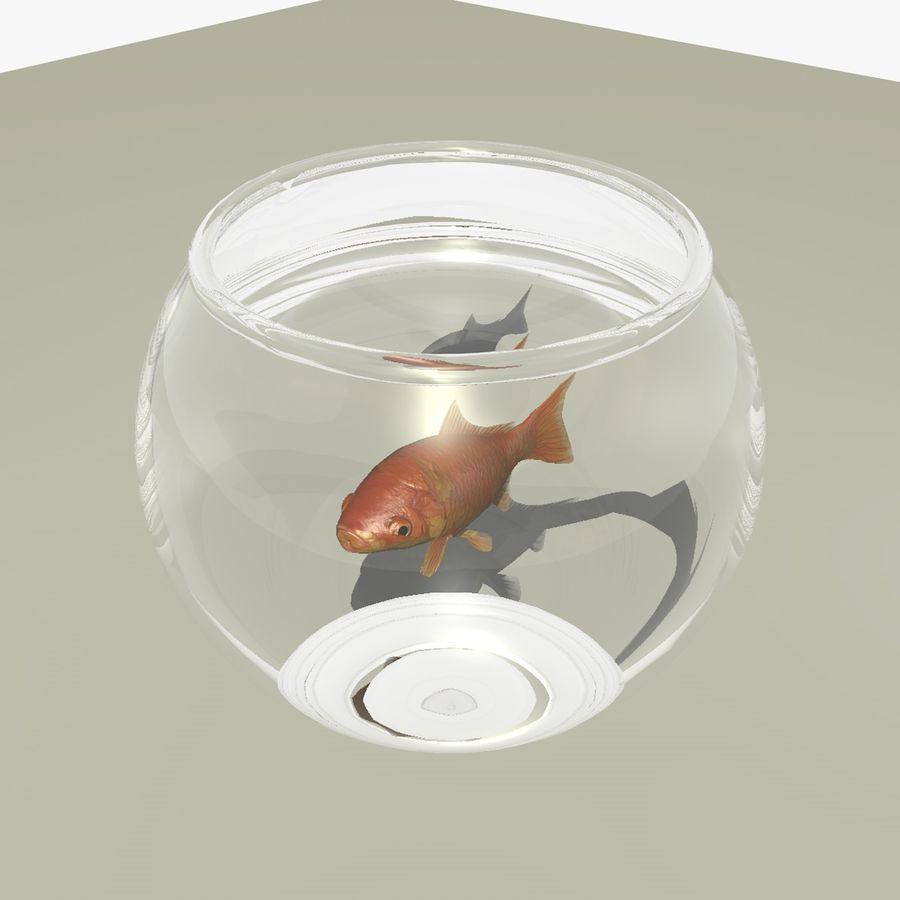 Peixe dourado animado em um aquário royalty-free 3d model - Preview no. 2