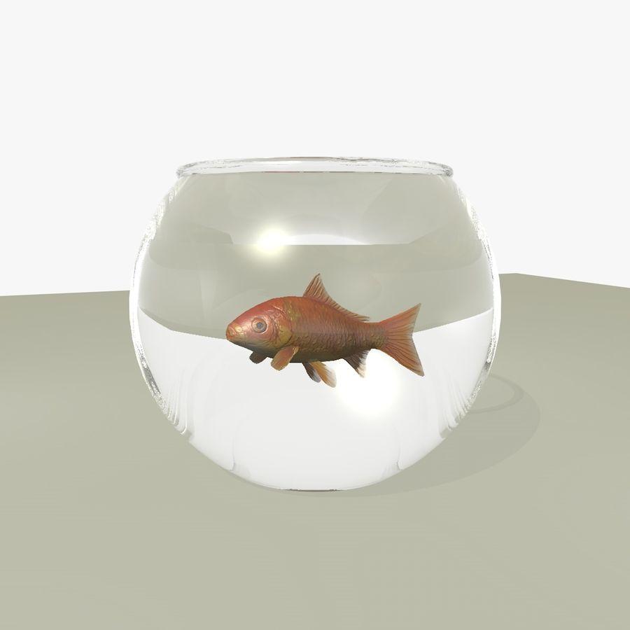 Peixe dourado animado em um aquário royalty-free 3d model - Preview no. 5