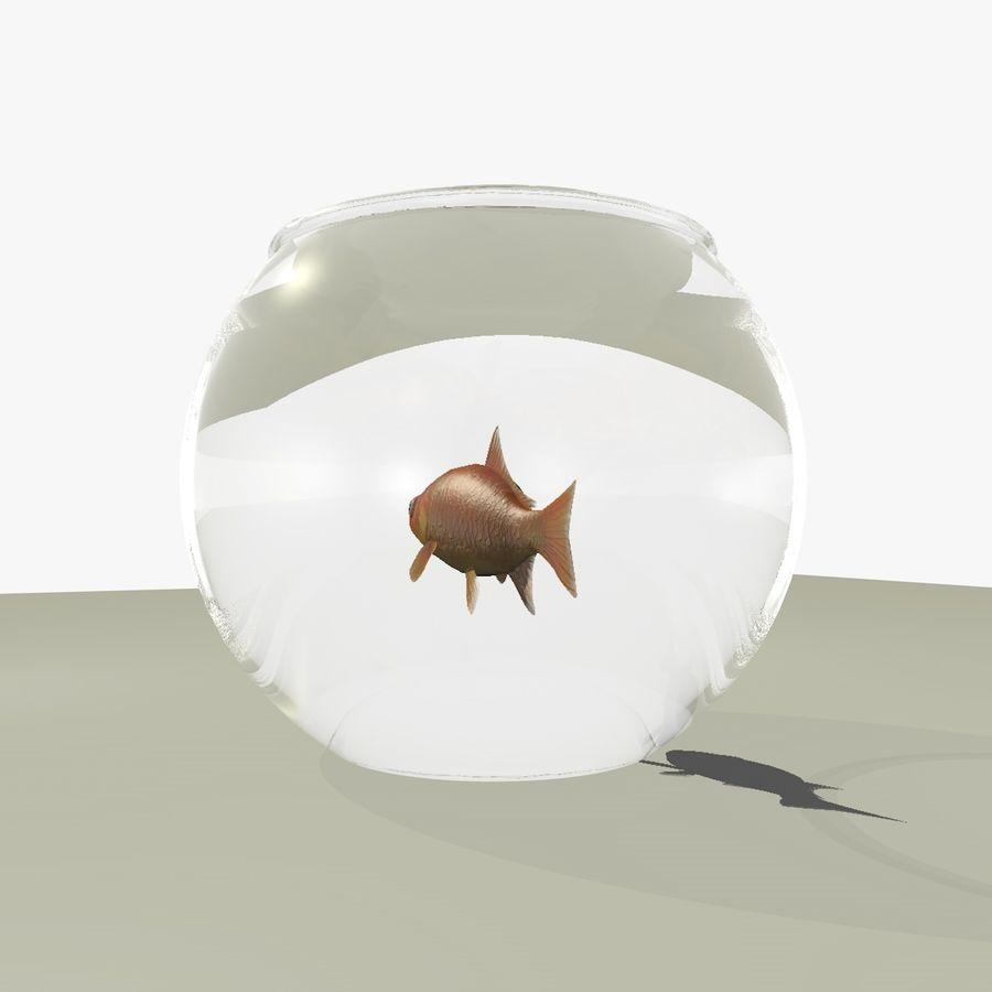 Peixe dourado animado em um aquário royalty-free 3d model - Preview no. 9