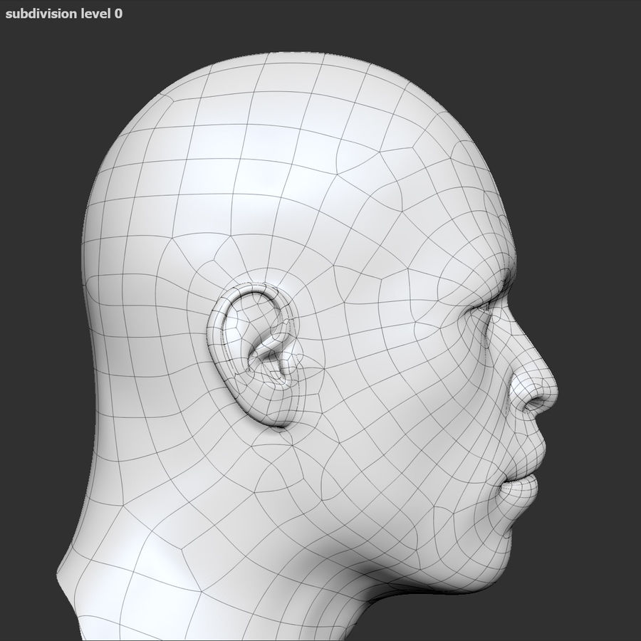 Human Head 4(Male) royalty-free 3d model - Preview no. 14