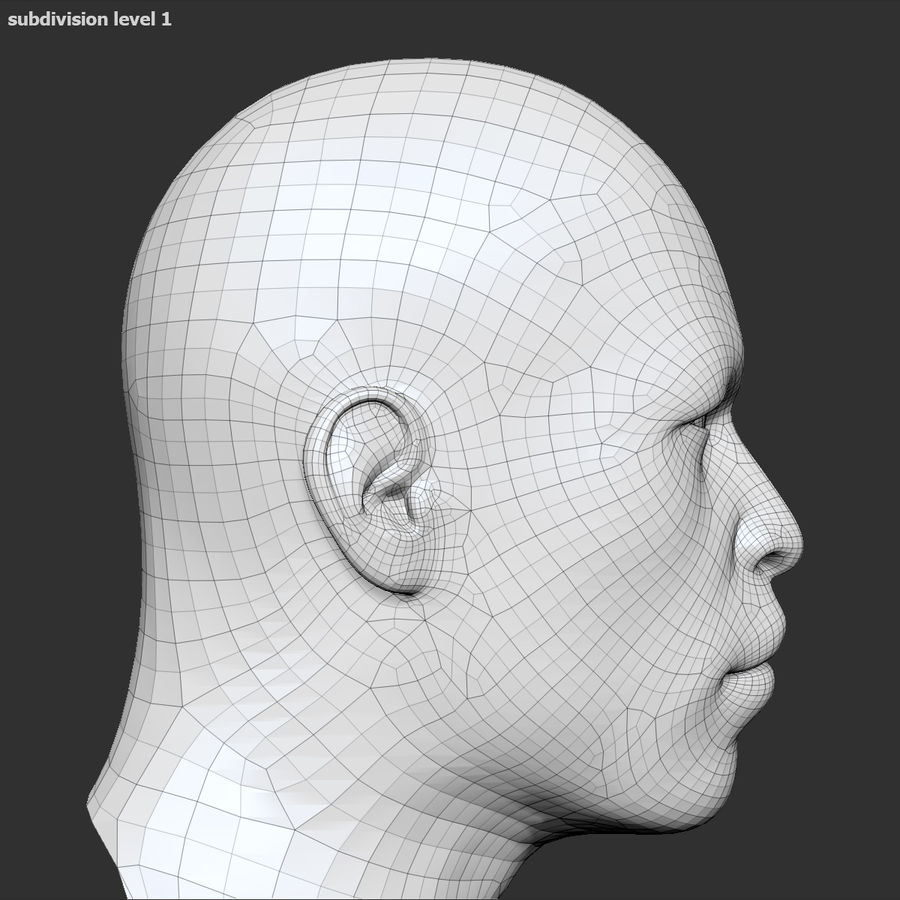 Human Head 4(Male) royalty-free 3d model - Preview no. 18