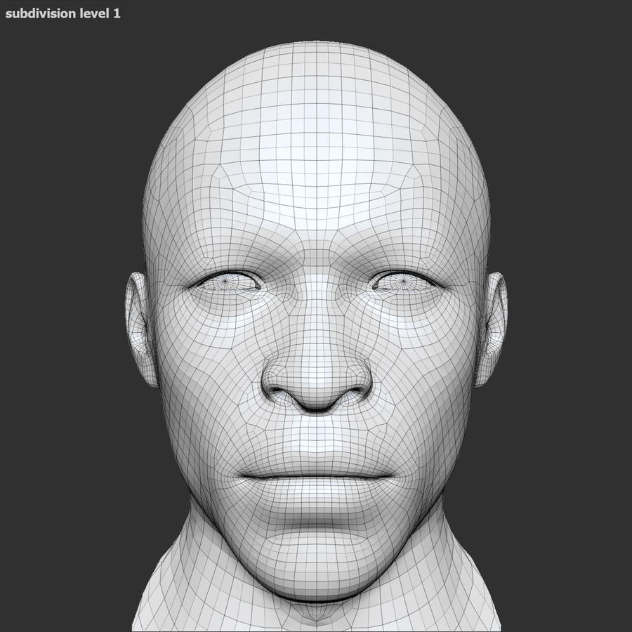 Human Head 4(Male) royalty-free 3d model - Preview no. 16