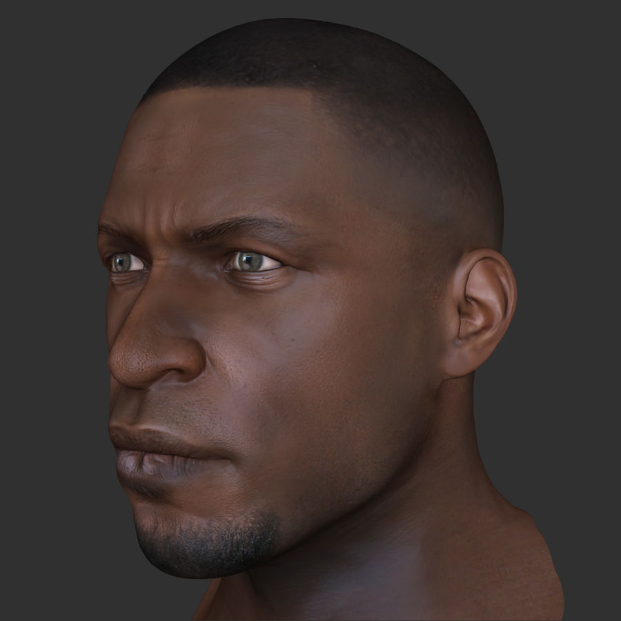 Human Head 4(Male) royalty-free 3d model - Preview no. 6
