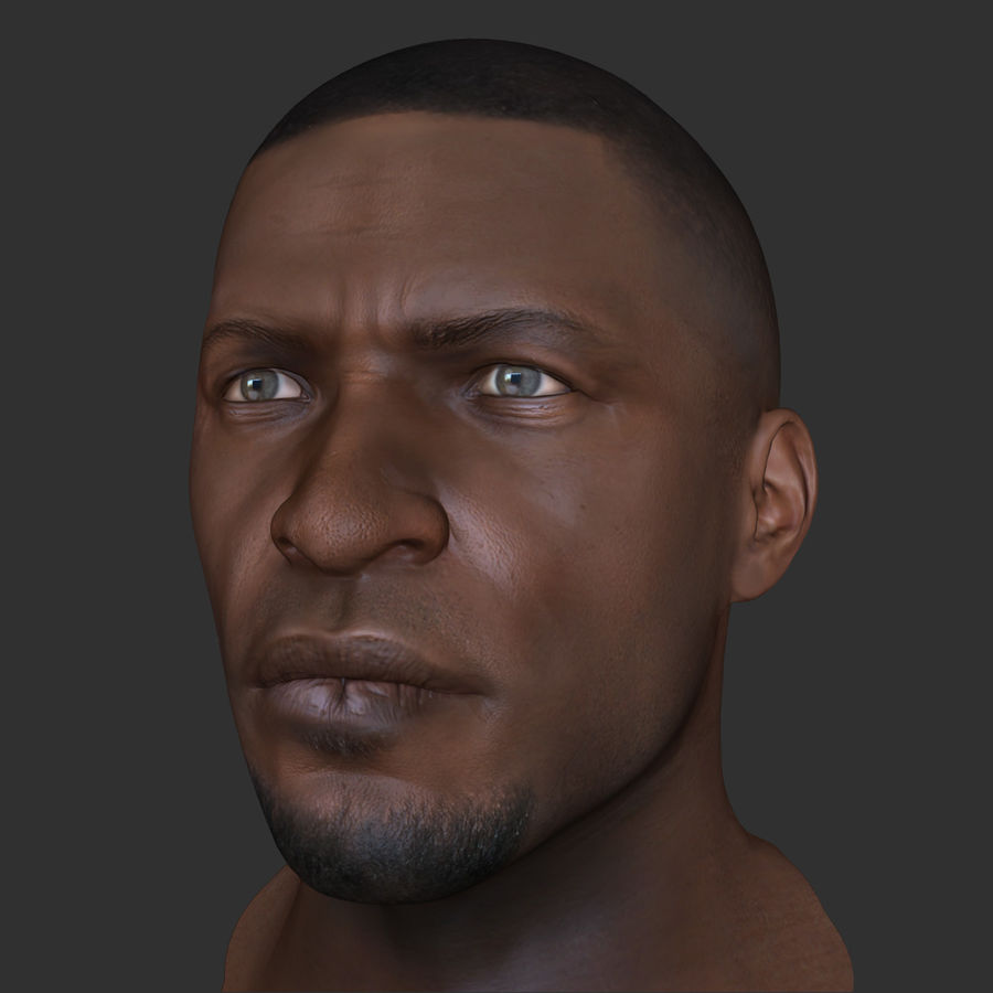Human Head 4(Male) royalty-free 3d model - Preview no. 9