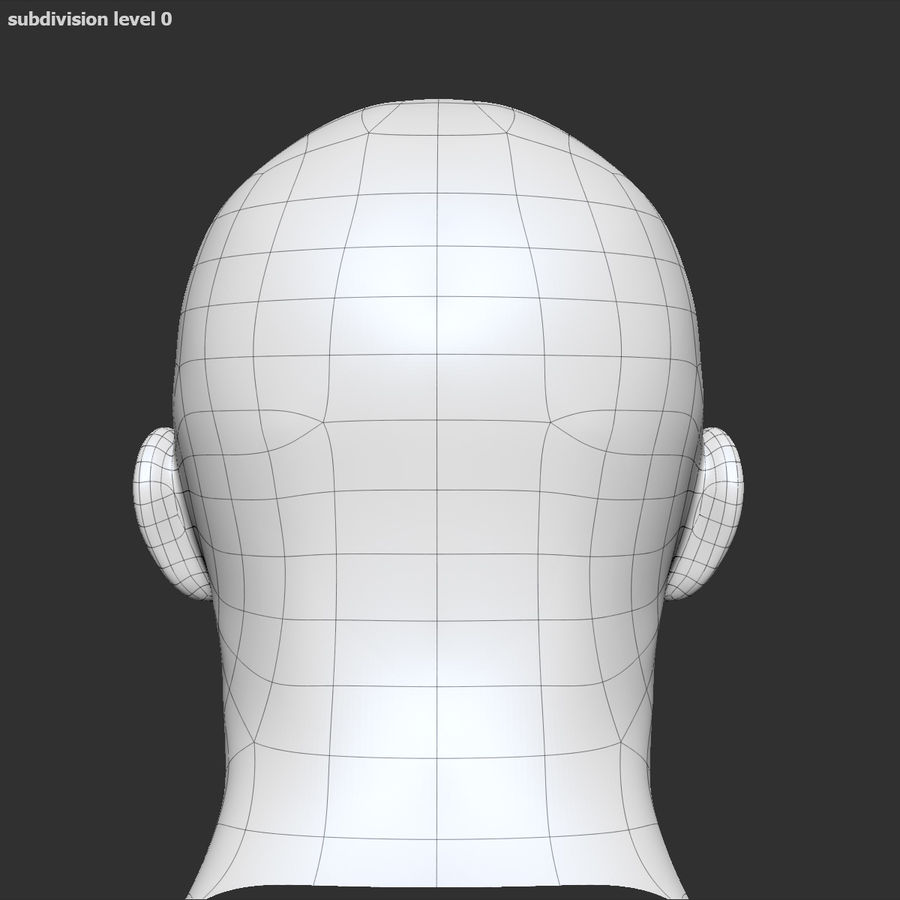 Human Head 4(Male) royalty-free 3d model - Preview no. 15