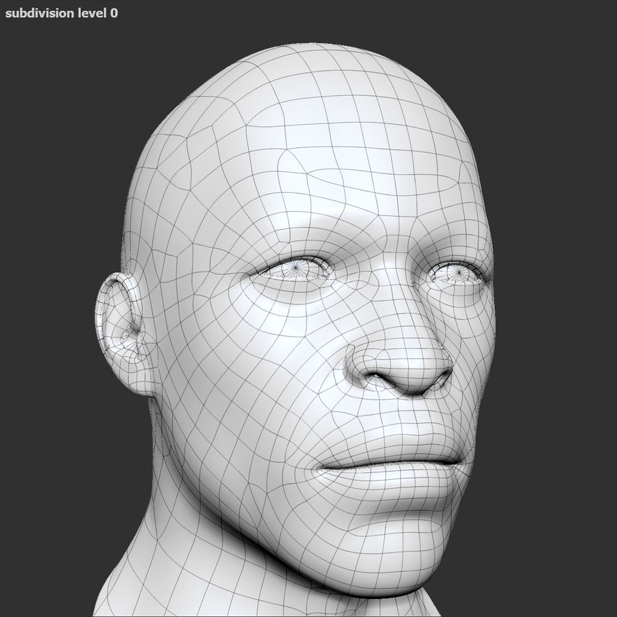 Human Head 4(Male) royalty-free 3d model - Preview no. 13