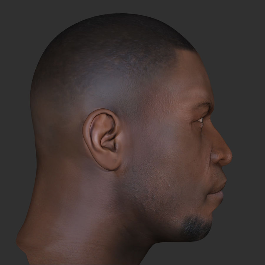 Human Head 4(Male) royalty-free 3d model - Preview no. 3