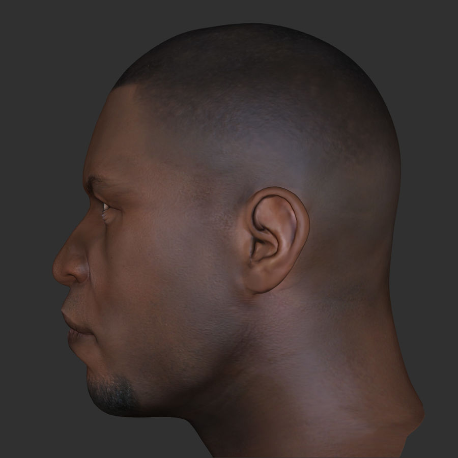 Human Head 4(Male) royalty-free 3d model - Preview no. 5