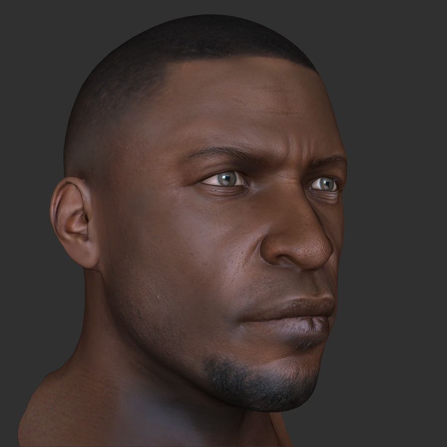 Human Head 4(Male) royalty-free 3d model - Preview no. 7