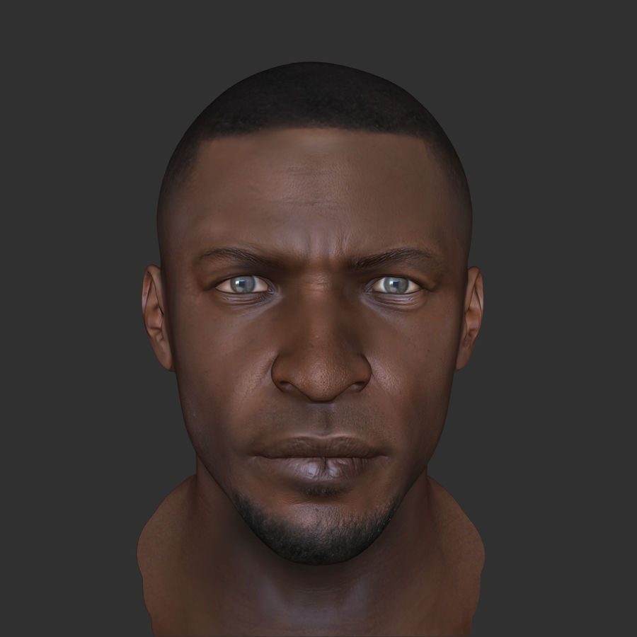 Human Head 4(Male) royalty-free 3d model - Preview no. 10
