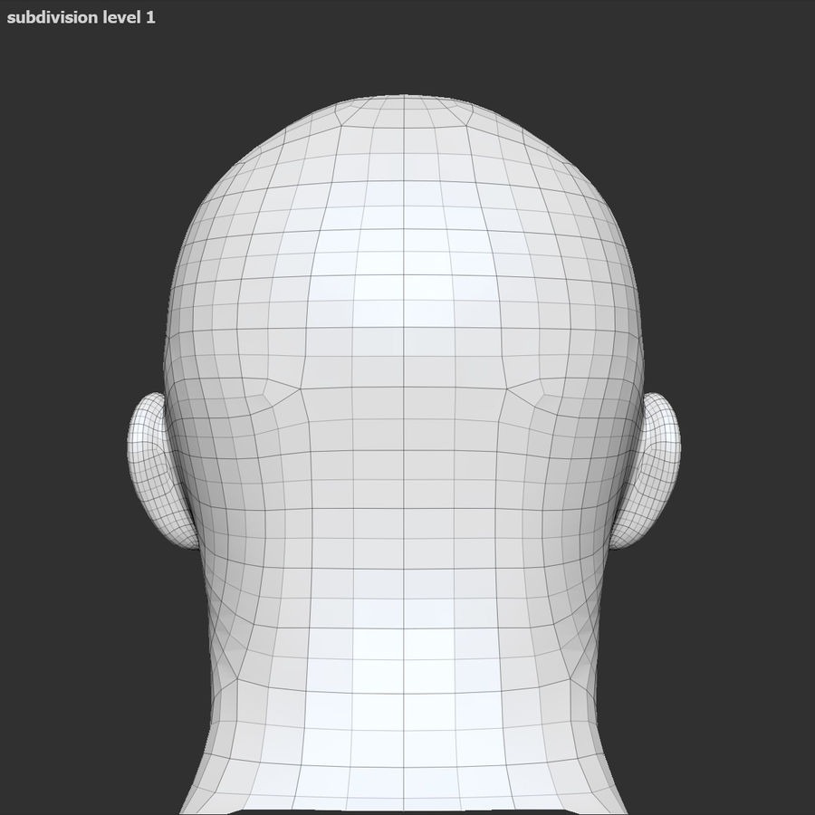 Human Head 4(Male) royalty-free 3d model - Preview no. 19