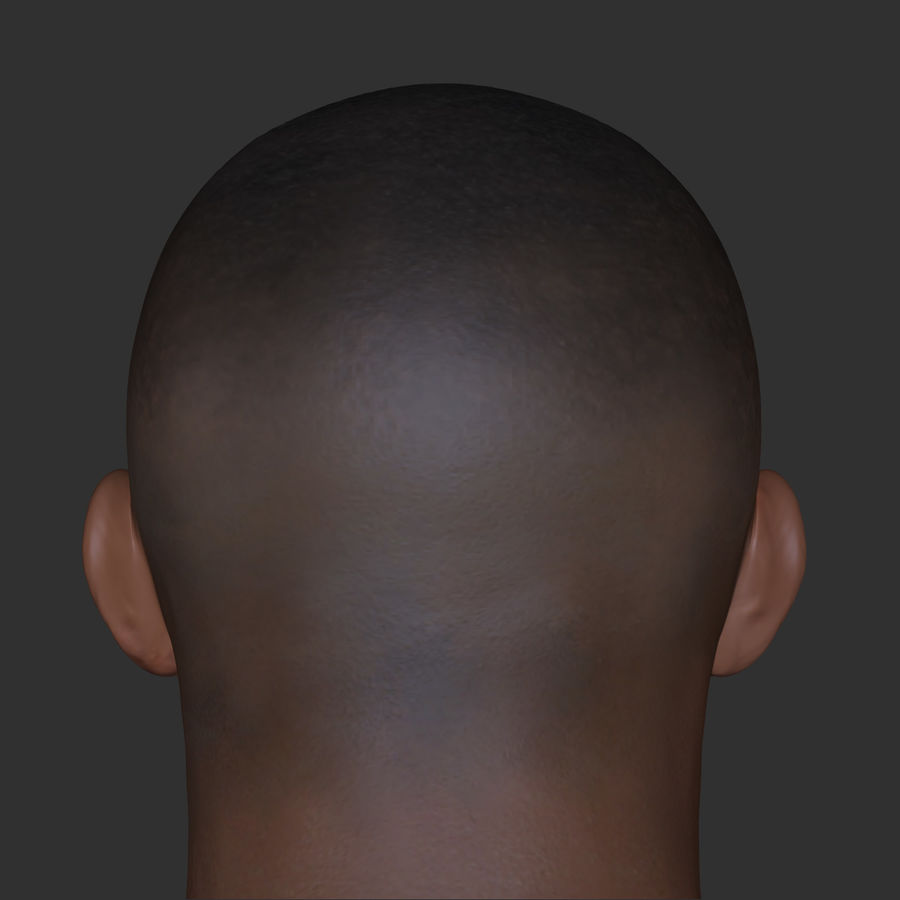 Human Head 4(Male) royalty-free 3d model - Preview no. 4