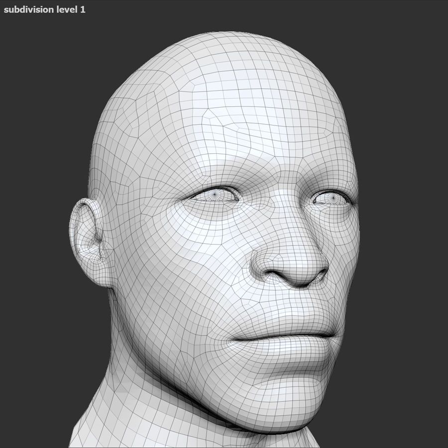 Human Head 4(Male) royalty-free 3d model - Preview no. 17
