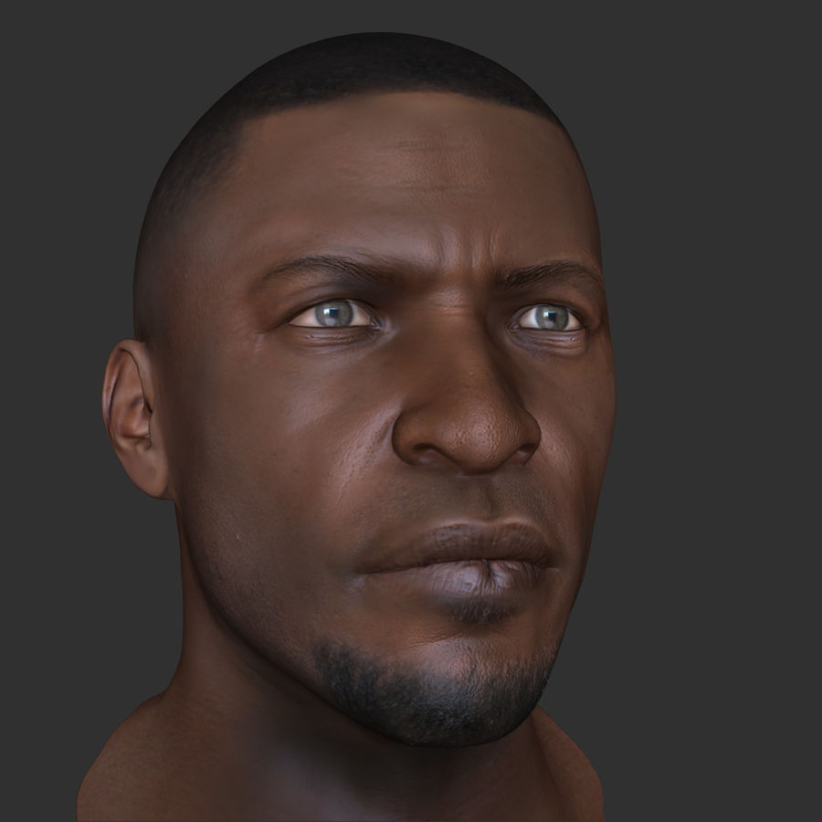Human Head 4(Male) royalty-free 3d model - Preview no. 8