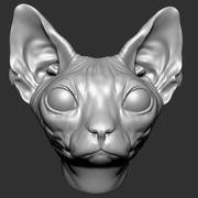 Sphynx-Katze 3d model