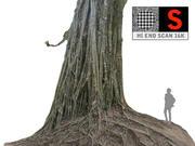 Drzewo dżungli 16 tys 3d model