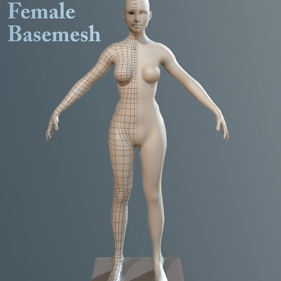 女Basemesh royalty-free 3d model - Preview no. 1