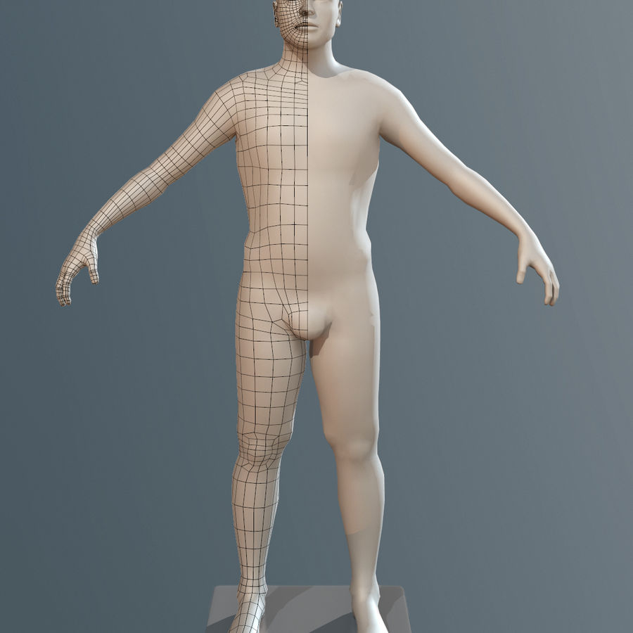 男性ベースメッシュ royalty-free 3d model - Preview no. 4