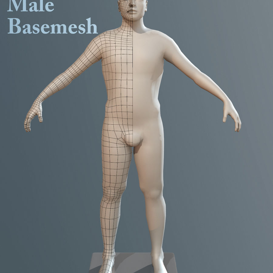 男性ベースメッシュ royalty-free 3d model - Preview no. 5