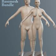 Basemesh Bundle 3d model