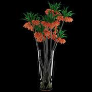 Fritillaria Imperials 3d model