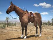 Cowboy a cavallo 3d model