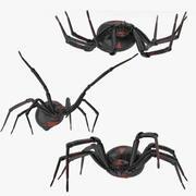 黑寡妇构成 3d model
