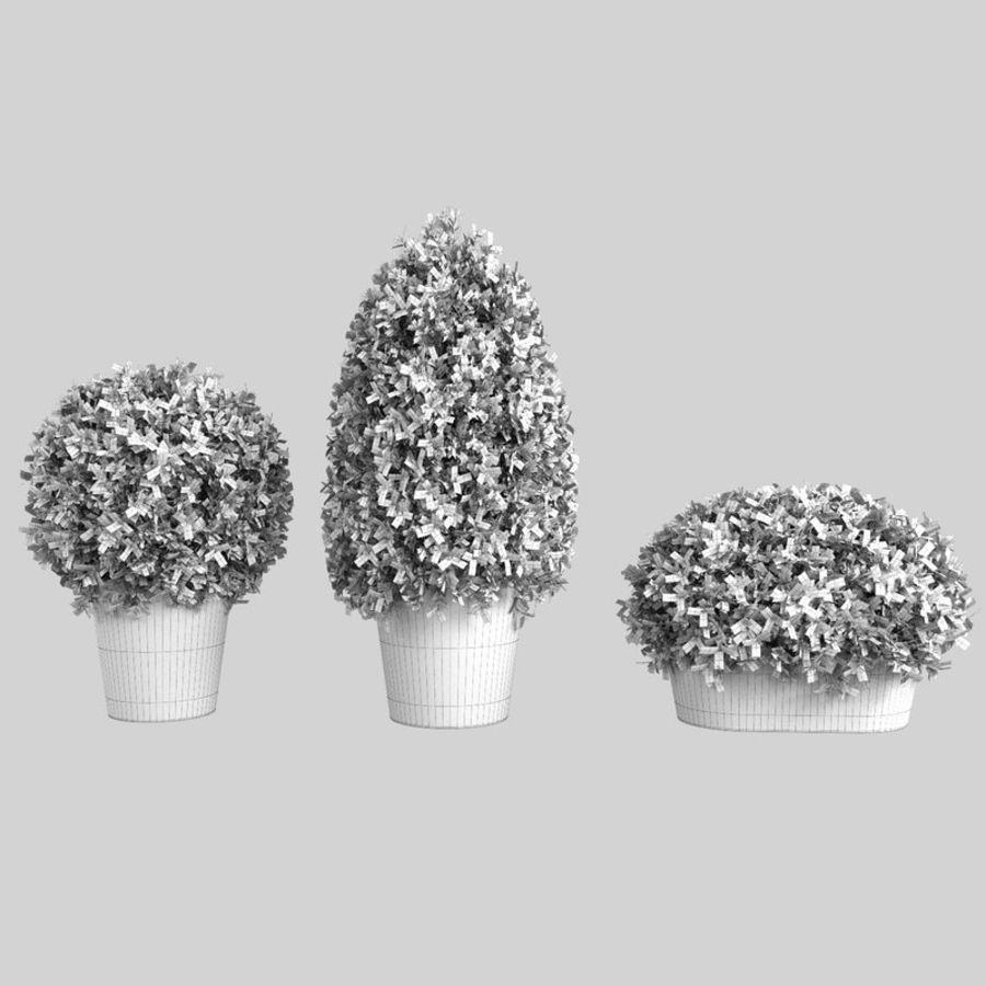 Plantas para interior y exterior royalty-free modelo 3d - Preview no. 11