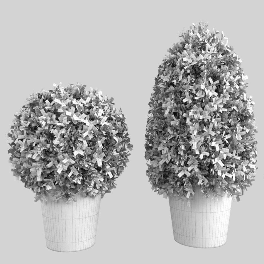 Plantas para interior y exterior royalty-free modelo 3d - Preview no. 12