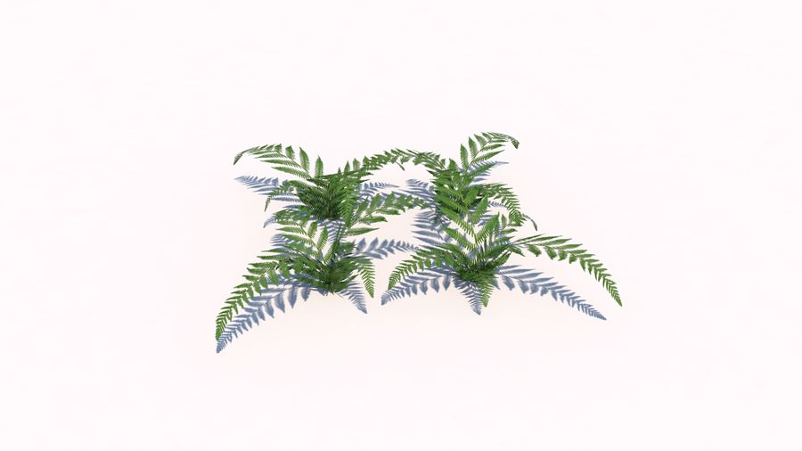 Plants - LowPoly royalty-free 3d model - Preview no. 9