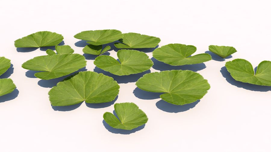 Plants - LowPoly royalty-free 3d model - Preview no. 3