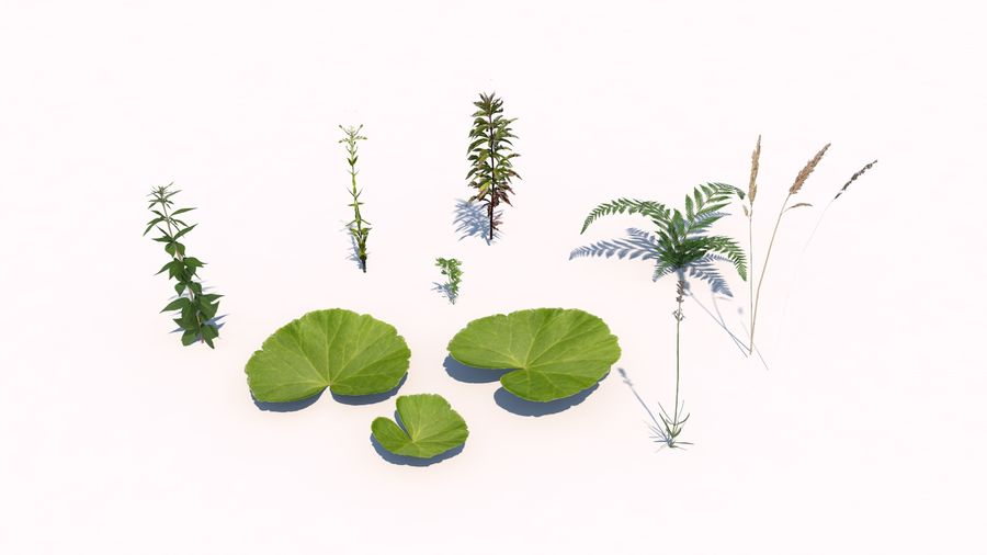 Plants - LowPoly royalty-free 3d model - Preview no. 2