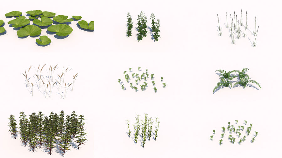 Plants - LowPoly royalty-free 3d model - Preview no. 1