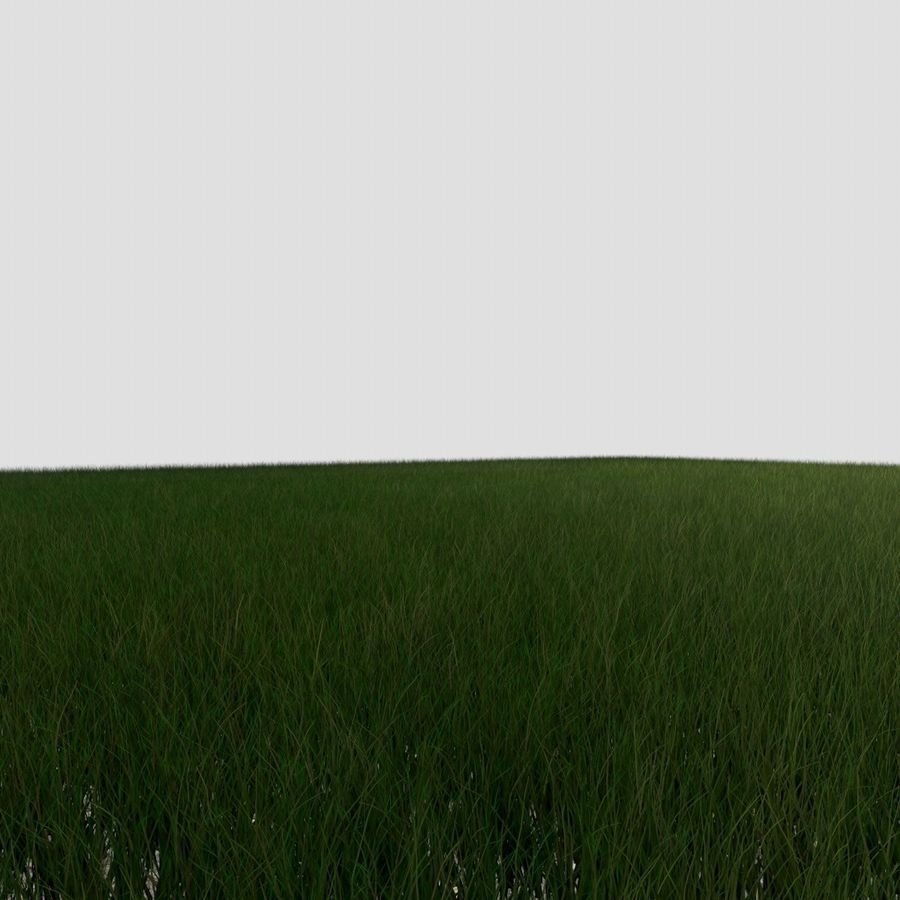 Dynamisch gras (1) royalty-free 3d model - Preview no. 2