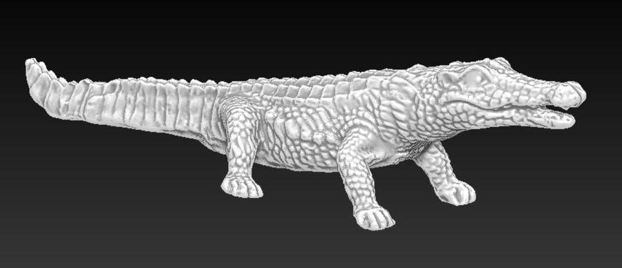Аллигатор Крокодил royalty-free 3d model - Preview no. 2