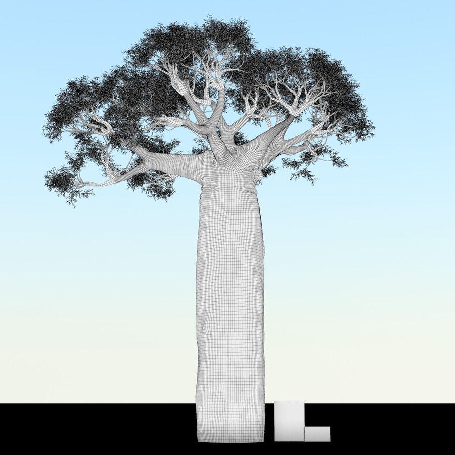 Baobab Tree 01 royalty-free 3d model - Preview no. 7