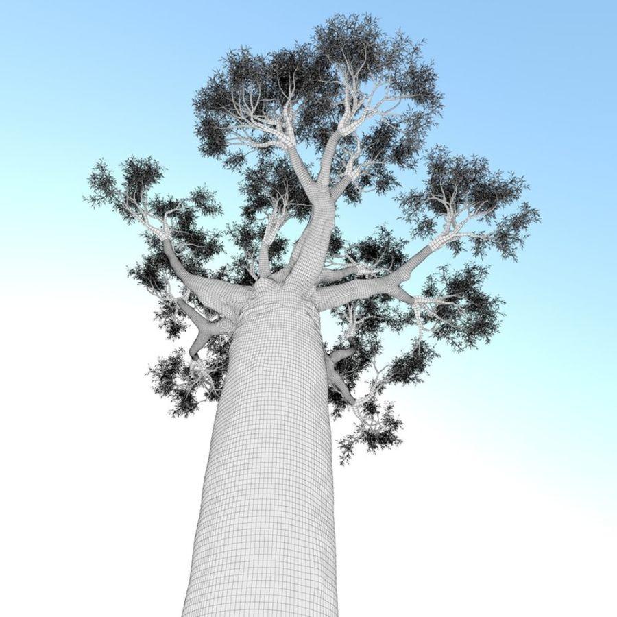 Baobab Tree 01 royalty-free 3d model - Preview no. 9