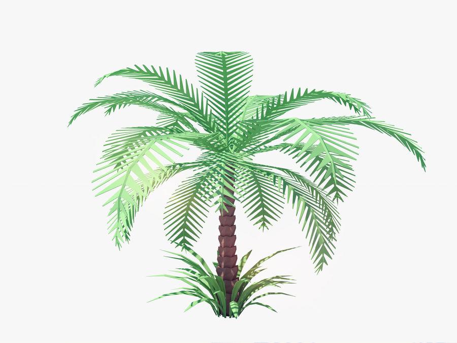 niskie drzewo palmowe Poly. Ożywiony royalty-free 3d model - Preview no. 1