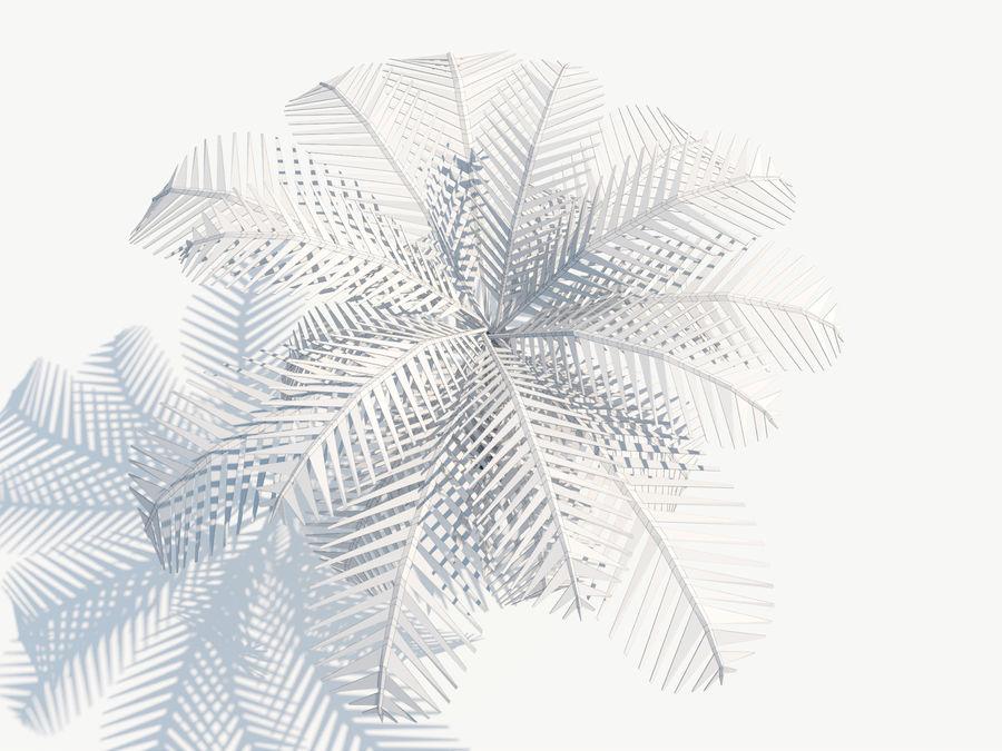 niskie drzewo palmowe Poly. Ożywiony royalty-free 3d model - Preview no. 6