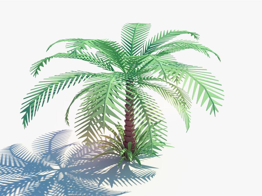 niskie drzewo palmowe Poly. Ożywiony royalty-free 3d model - Preview no. 2