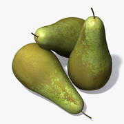 Conference Pear 3d model