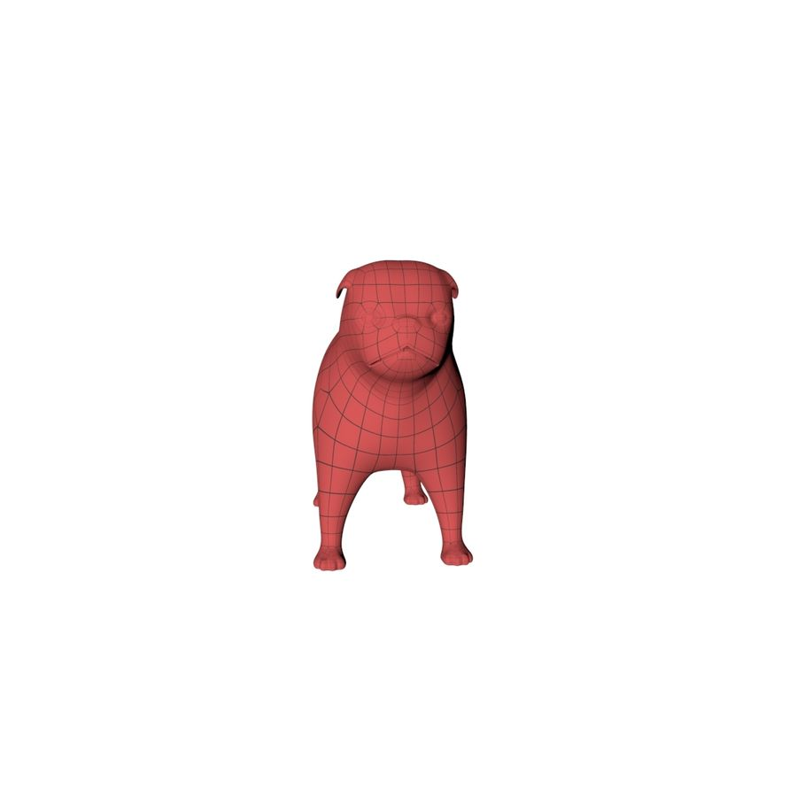 Pug base mesh royalty-free 3d model - Preview no. 4