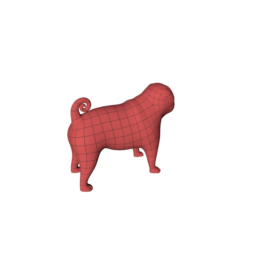 Pug base mesh royalty-free 3d model - Preview no. 7