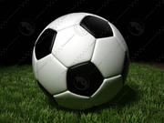 Soccer ball grass 3d model