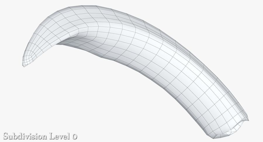 Warthog Tusk royalty-free 3d model - Preview no. 15