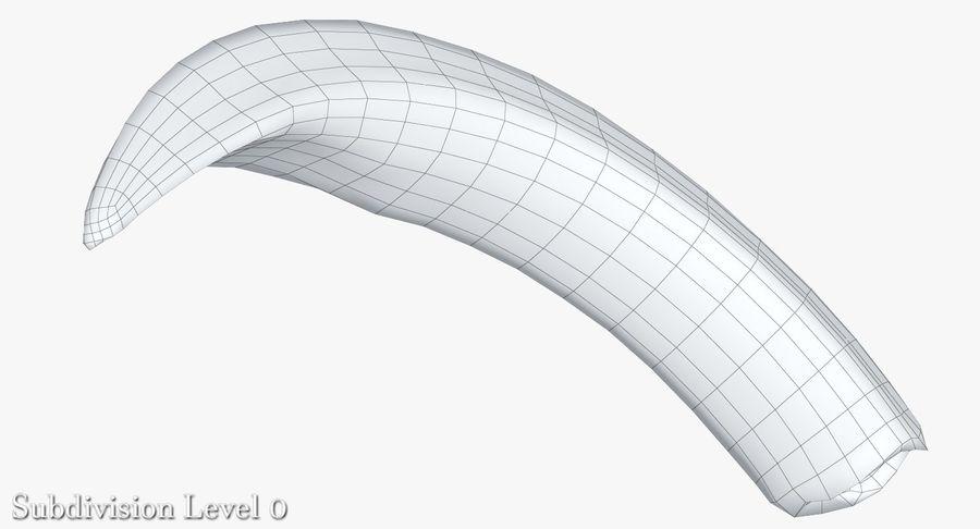 Défense de phacochère royalty-free 3d model - Preview no. 15